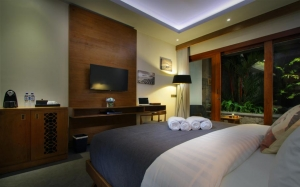 deluxe pool view - akana boutique hotel sanur